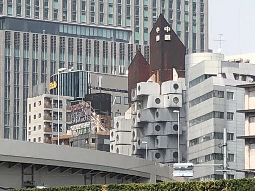 Capsule architecture