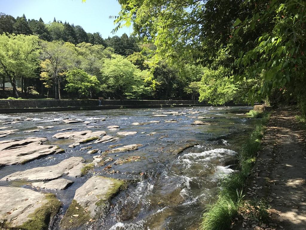 滝の上のほうは開けた川辺公園