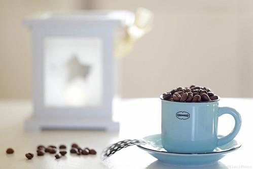 Coffee overdose...