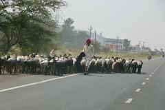 Nashik, India, 2018