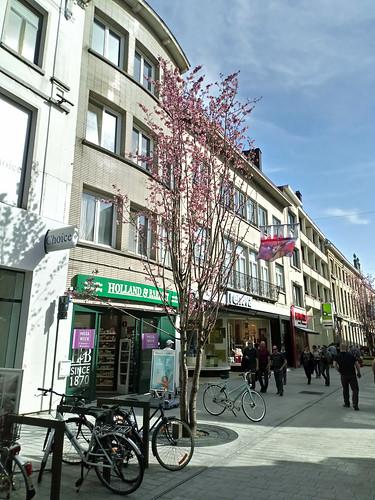 Spring in Mechelen