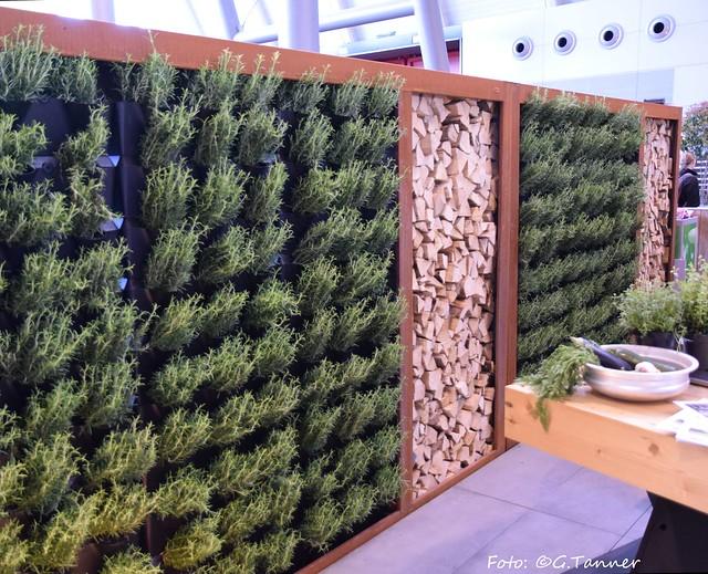 Gartenbloggertreffen und Frühlingsmessen 2018