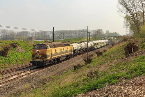 TUC-Rail 5528 + Weedfree + 6244