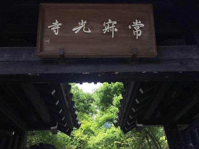 常寂光寺青もみじ山門2