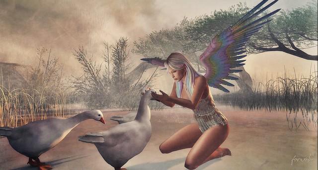 Goose Care - mystical fae