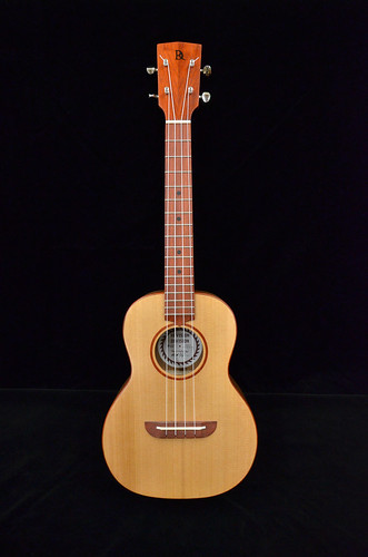 Handmade Ukulele by Revision Division of The RE Store