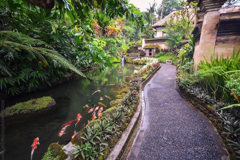 Singapur-Bali-(6)