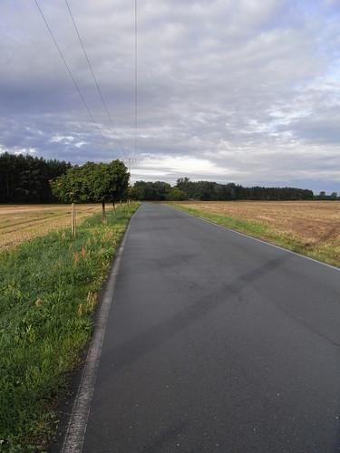 20100827 018 0107 Jakobus Straße Felder Wald Wolken