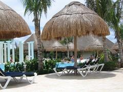 arecales, umbrella, vacation, resort,