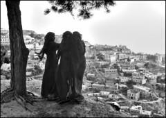 Immagini dello Yemen