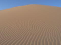 erg(1.0), sand(1.0), aeolian landform(1.0), natural environment(1.0), desert(1.0), dune(1.0), landscape(1.0), singing sand(1.0),