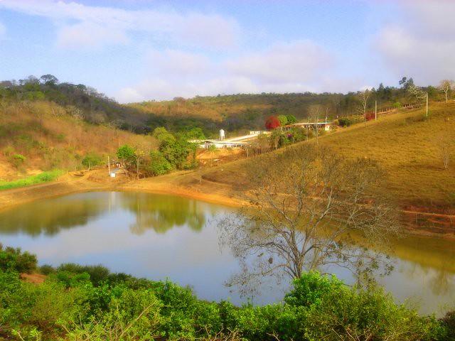 Brazilian Landscape, Sony DSC-M1