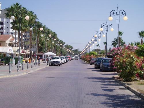 Palm Trees promenade, Larnaca - Cyprus