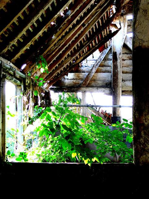 Bucklebury barn