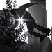 B&W Silhouette by Lisa Funk