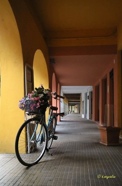 Vélo romantique...
