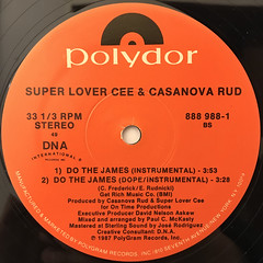 SUPER LOVER CEE & CASANOVA RUD:DO THE JAMES(LABEL SIDE-B)