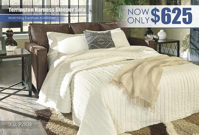Terrington Harness Sleeper Sofa_92903-39
