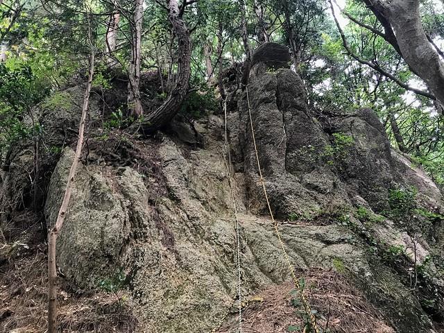 仙ヶ岳 南尾根 垂直ロープ場