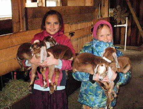 qua, 03/28/2018 - 23:24 - Girls and Goats