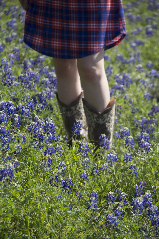 Bluebonnet photoshoot_89