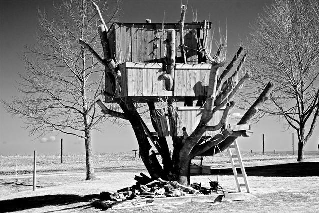 Horton Landing treehouse