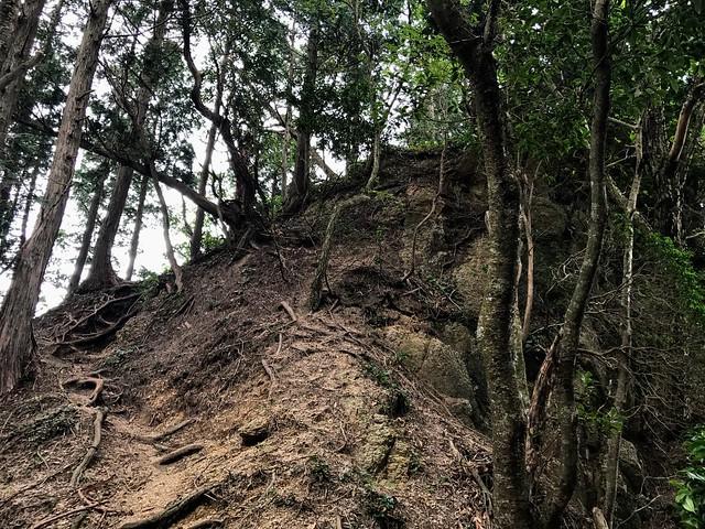 仙ヶ岳 南尾根 滝谷不動への道