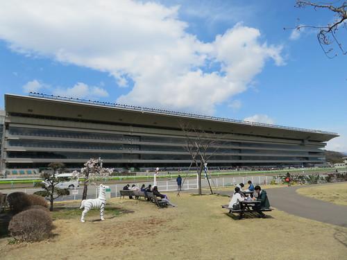 福島競馬場の内馬場から見たスタンド