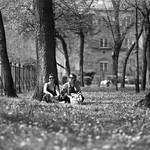 Kati, Eszter and dandelions