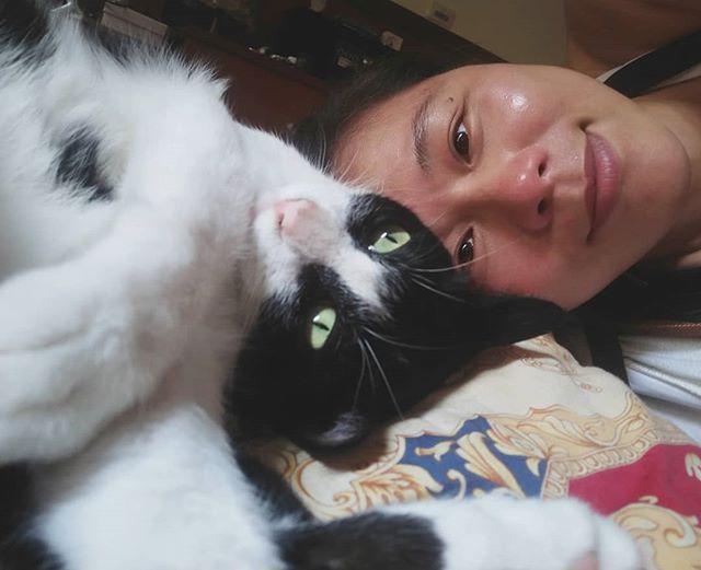 20180502 晚安 #戴家黑糖蜜 #cats
