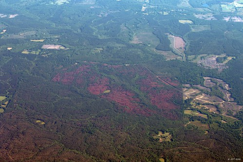 zeesstof aerial aerialview flight commercialflight viewfromwindow windowseat airline unitedairlines united mississippi perkinston unitedstates usa trees forest landscape