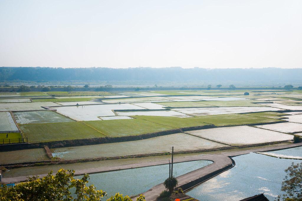 台中 稻田照