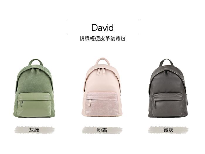 02_David_series-700