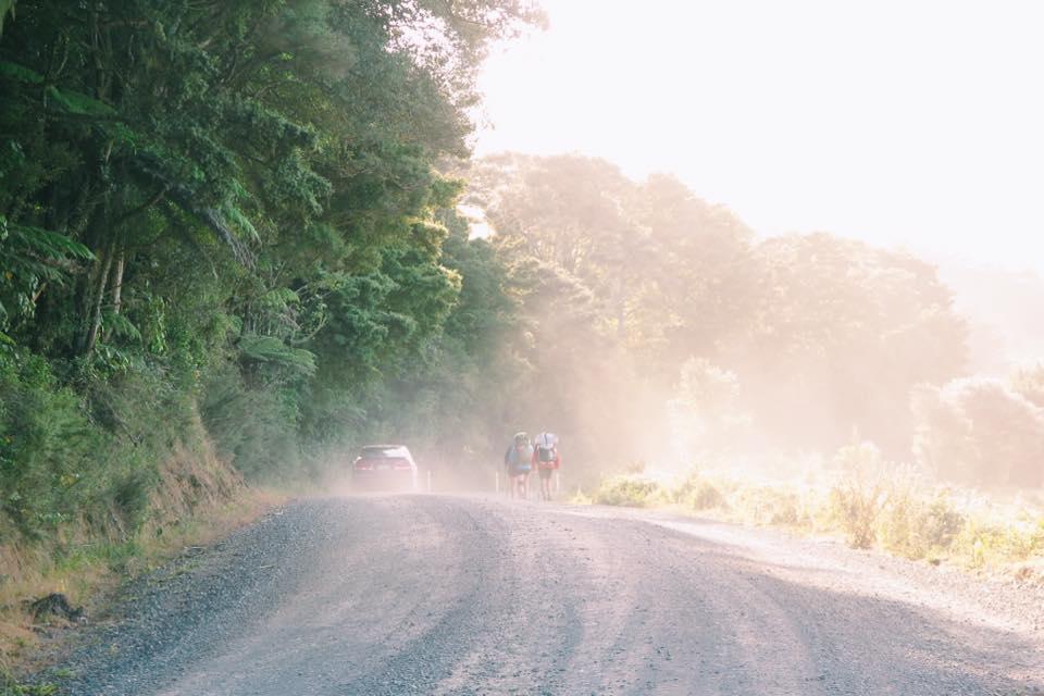 NZ_TA_170205_3.jpg
