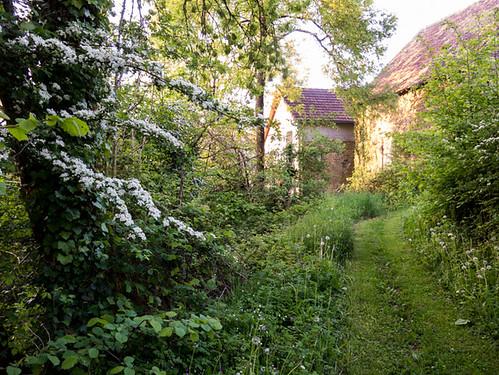 Tuinpad richting buurman