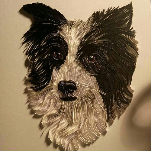 Paper Art Border Collie