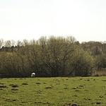 20180420-131121 Pano - Landschaft - Schleswig-Holstein