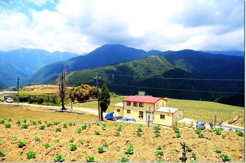 平岩山展望 4
