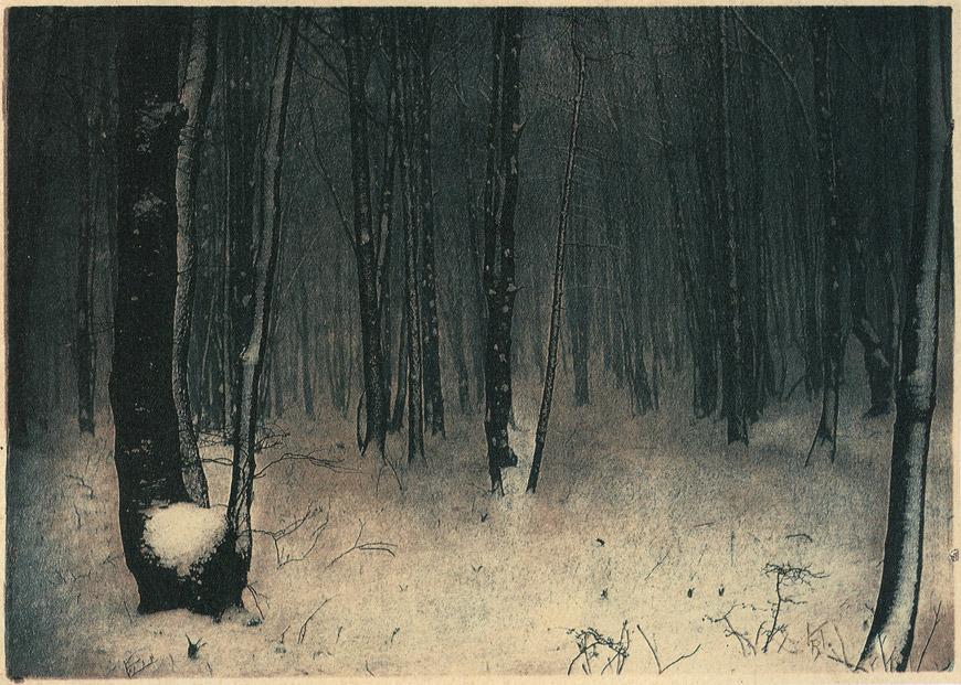 Rudolf Koppitz (1884-1936), In Wiener Wald - 1910.jpg