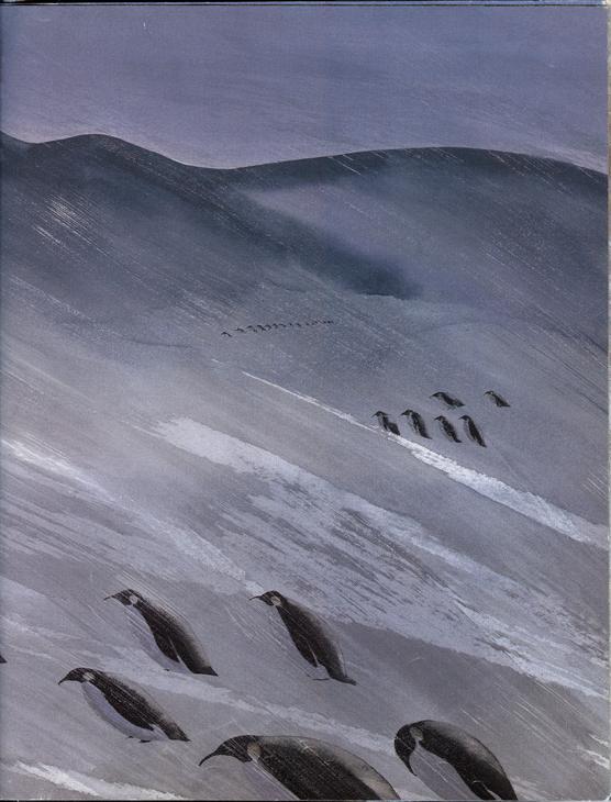 Antarctica14