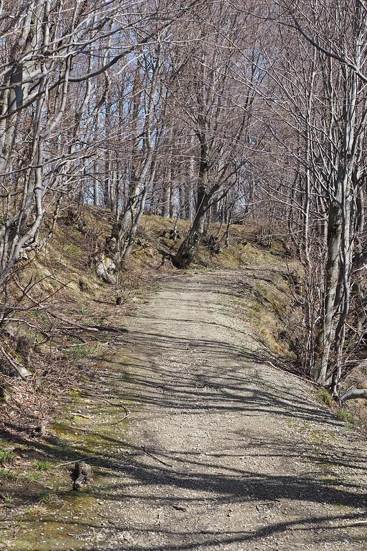 Suru Hut, Fagaras Mountains