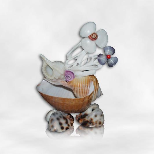 貝殼手工小盆栽