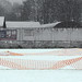 Cricket pitch in snow