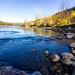 Sunny Days on Riversides