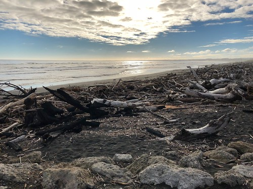 Where the Whanganui river meets the ocean. Note the massive amounts of driftwood that have collected