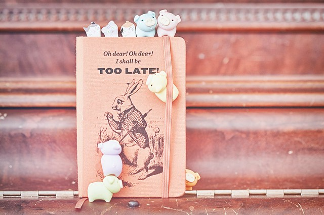 127/365 : Tiny Journal
