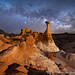 The Toadstools Revisited by David Swindler (ActionPhotoTours.com)