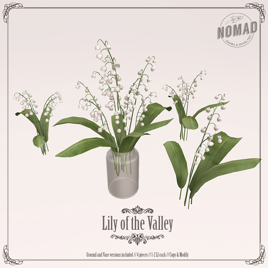 NOMAD // Lily Of The Valley - TeleportHub.com Live!
