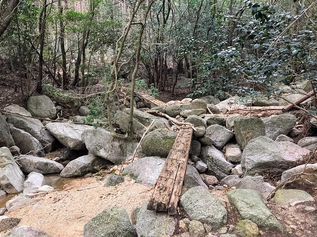 仙ヶ岳 南尾根・白谷道 木橋
