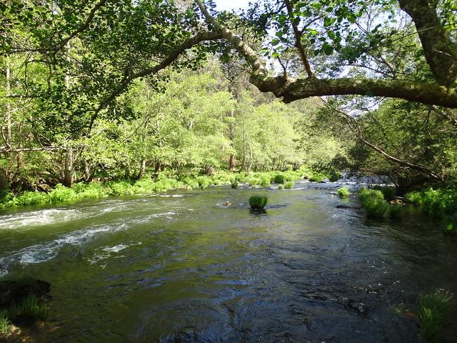 Río Grande Camariñas